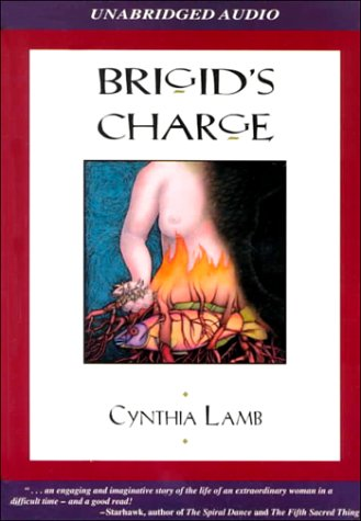 9781893530096: Brigid's Charge: A Tale of Persecution with a Twist