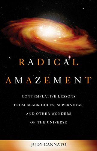 9781893732995: Radical Amazement: Contemplative Lessons from Black Holes, Supernovas, and Other Wonders of the Universe