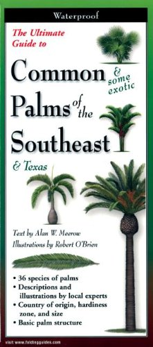 The Ultimate Guide to Common Palms of the Southeast & Texas (Foldingguides)