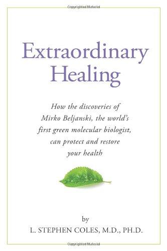 9781893910898: Extraordinary Healing