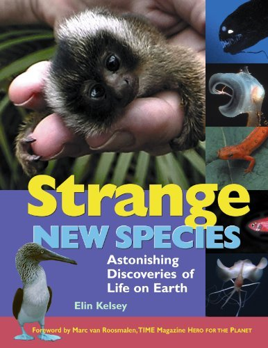 9781897066324: Strange New Species: Astonishing Discoveries of Life on Earth