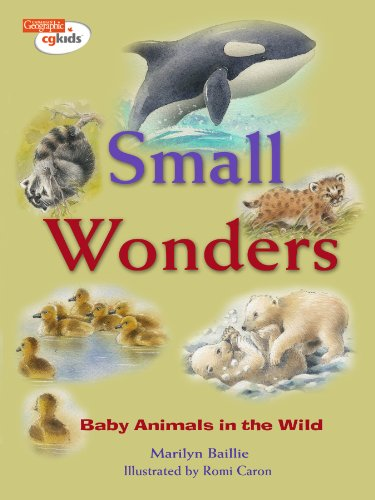 9781897066720: Small Wonders: Baby Animals in the Wild