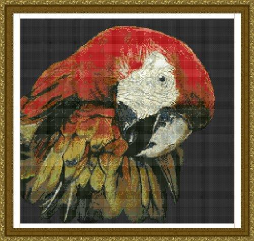 9781897097670: Macaw-Jw-014