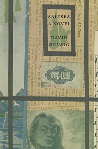 Saltsea: A Novel: David Helwig