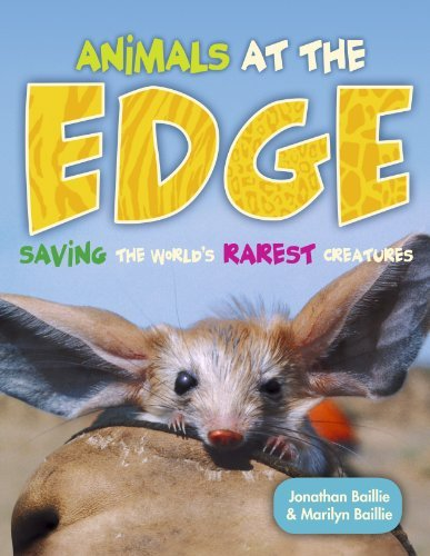 9781897349335: Animals at the EDGE: Saving the World's Rarest Creatures