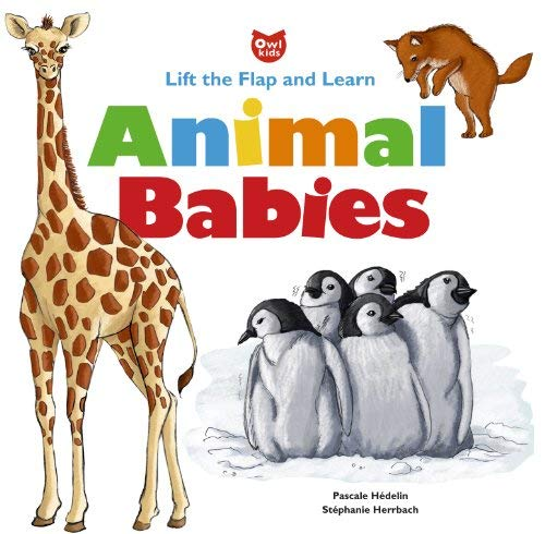 Animal Babies: Lift the Flap and Learn: Pascale Hedelin
