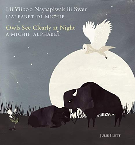 Owls See Clearly at Night (Lii Yiiboo: Julie Flett