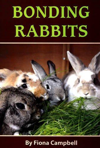 9781898015109: Bonding Rabbits
