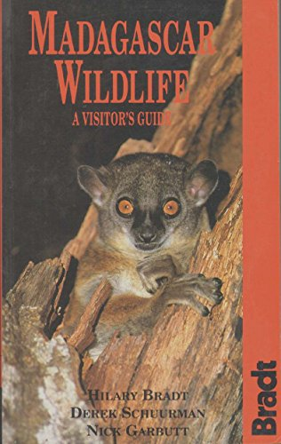 9781898323402: Madagascar Wildlife: A Visitor's Guide
