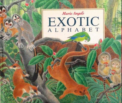 9781898784692: Exotic Alphabet: A Lift-the-Flap Alphabetic Safari