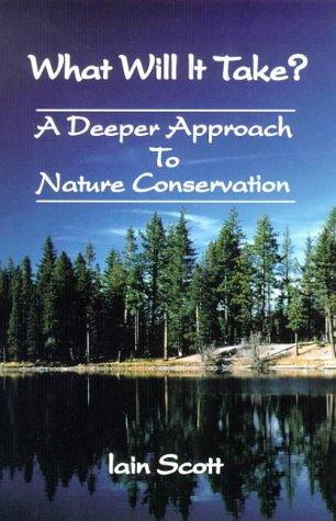 What Will it Take?: A Deeper Approach: Scott, Iain