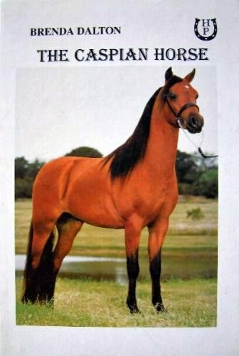 9781899310210: The Caspian Horse