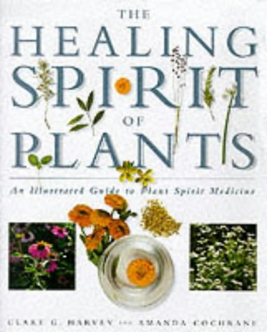 9781899434848: The Healing Spirit of Plants: An Illustrated Guide to Plant Spirit Medicine