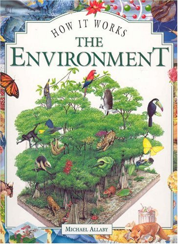 9781899762132: The Environment (How It Works)