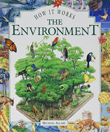 9781899762378: The Environment, The (How it works)