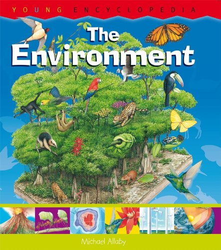 9781899762835: The Environment: What Is the Water Cycle? What Is the Greenhouse Effect? (Horus Editions - Young Encyclopedia)