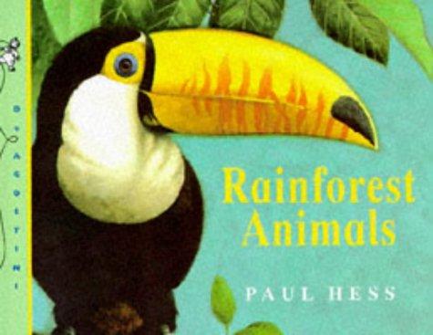 9781899883073: Rainforest Animals (My First Animal Word Books)