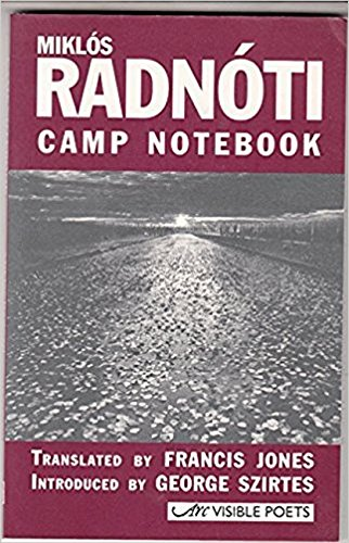 9781900072304: Camp Notebook (Visible Poets)