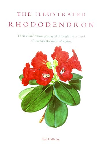9781900347990: Illustrated Rhododendron, The