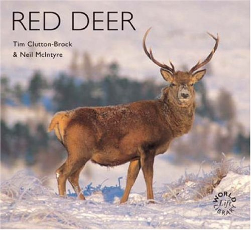 Red Deer (Worldlife Library) (1900455579) by Neil McIntyre; McIntyre