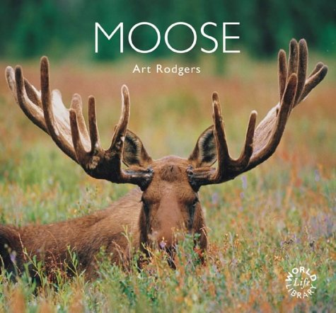 9781900455657: Moose (Worldlife Library)