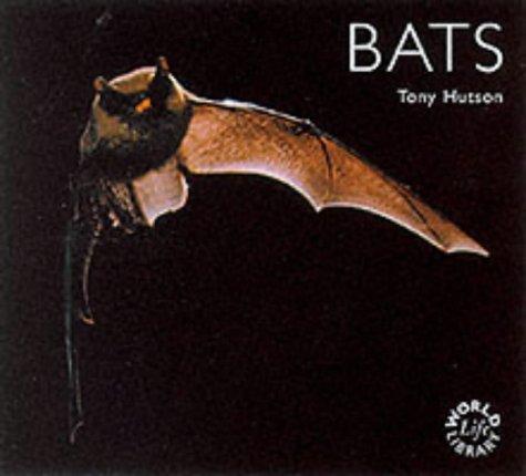 9781900455671: Bats (Worldlife Library)