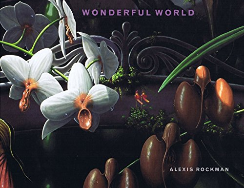 9781900470322: Rockman Alexis - Wonderful World