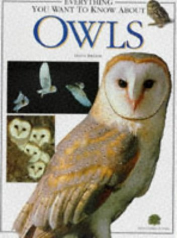 9781900732055: Everything You Want to Know About Owls