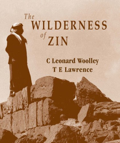 9781900988292: Wilderness of Zin