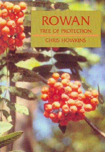 9781901087000: Rowan: Tree of Protection