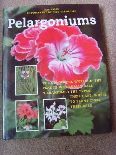 Pelargoniums: Mia Esser