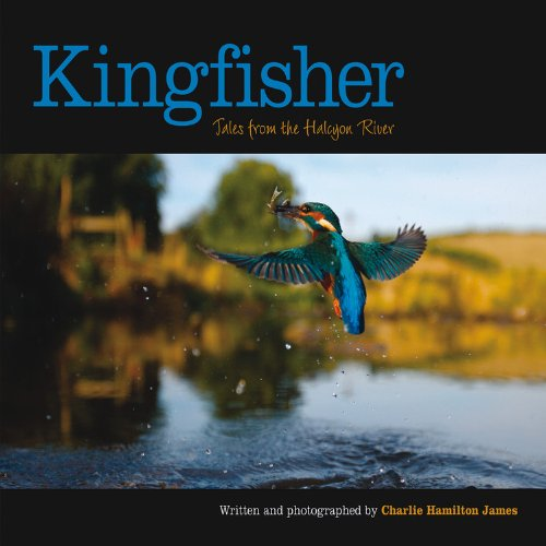 Kingfisher: Tales from the Halcyon River: Charlie Hamilton James
