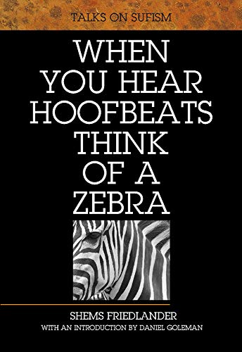 9781901383195: When You Hear Hoofbeats Think of a Zebra: Talks on Sufism
