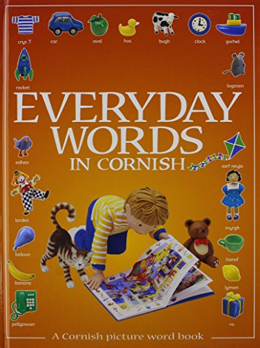 9781901409086: Everyday Words in Cornish