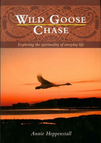 9781901557947: Wild Goose Chase: Exploring the Spirituality of Everyday Life
