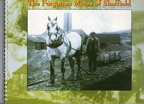9781901587401: The Forgotten Mines of Sheffield