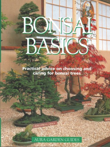 9781901683042: Bonsai Basics
