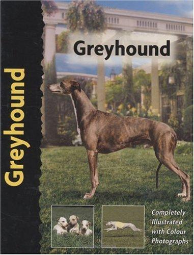 9781902389363: Greyhound (Pet love)