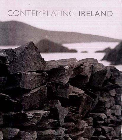 Contemplating Ireland: Gleason, James