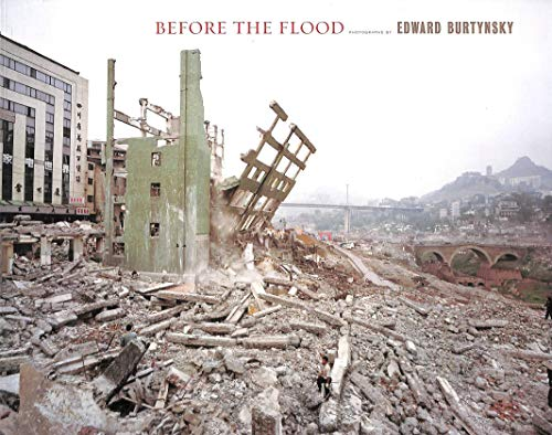 9781902945613: Before the Flood