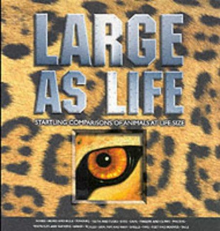Large as Life: Parker, Steve