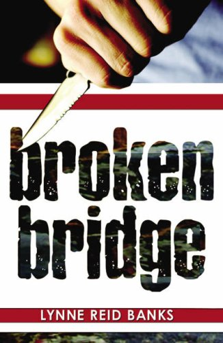 9781903015681: Broken Bridge