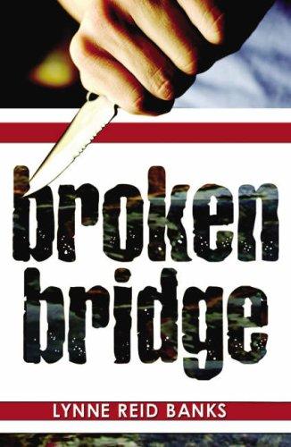 9781903015681: Broken Bridge