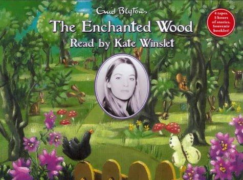 9781903614006: The Enchanted Wood (Faraway Tree)