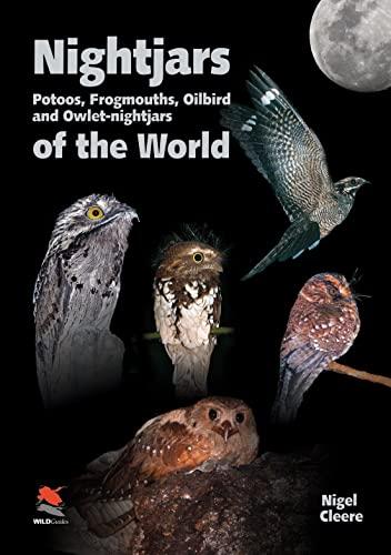 Nightjars, Potoos, Frogmouths, Oilbird, and Owlet-Nightjars of the World (Hardback): Nigel Cleere
