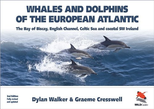 Whales and Dolphins of the European Atlantic: The Bay of Biscay, English Channel, Celtic Sea, and ...