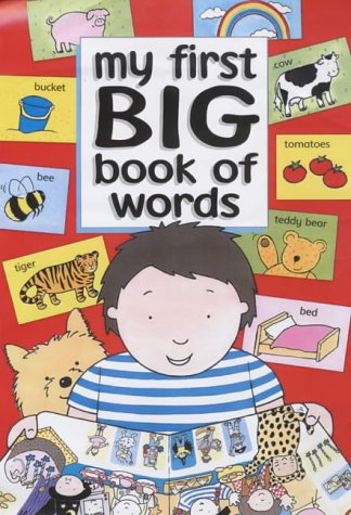 9781903840078: My First Big Book of Words