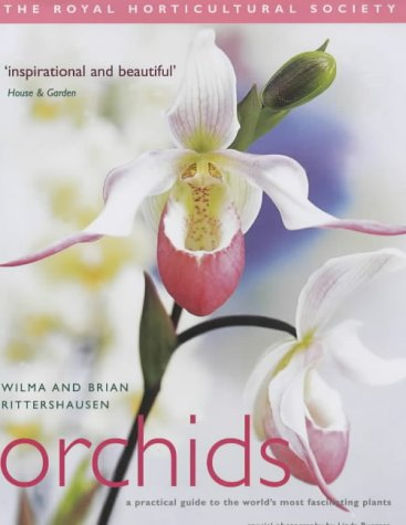 9781903845592: RHS Orchids: A Practical Guide to the World's Most Fascinating Plants