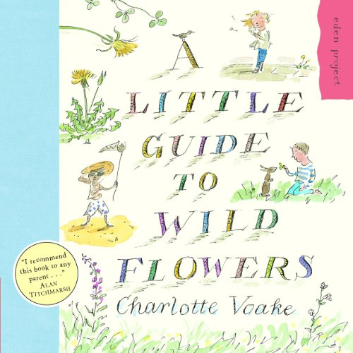 9781903919118: A Little Guide To Wild Flowers (Eden Project)