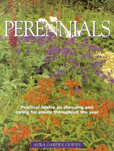 Perennials : (Aura Garden Guides :): Siegfried Stein